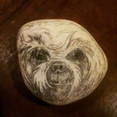 "RM 10 L'p - mad poodle 3"" x 2.8"" charcoal / pencil sketch on stone"