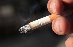 Om te stoppen met roken zijn er verschillende opties beschikbaar. Lees hier meer over een aantal planten die je helpen om te stoppen met roken.