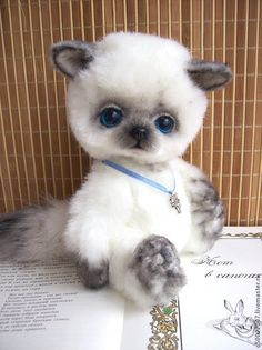 Купить Симочка - белый, котик, котенок, сиамская кошка, тедди, друзья тедди