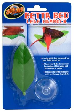 Betta Hammock - stores I went to didn't have on so I bought a silk aquarium plant for his tank and plucked one big leaf off - added a suction cup thingy and made my own - matches his 'other' plant.  He hasn't tried it out yet.