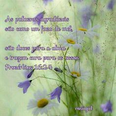 #Provérbios #Sabedoria #PalavrasAgradáveisTrazemCura #LiberePalavrasDeVida #DeusFiel #rosiigiil