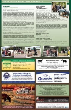 Focus on Community North York, Community Events, Circuit