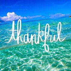 Happy Thanksgiving!! #Stream2Sea #EcoConscious #NaturalSunscreen  #Thanksgiving #Grateful #Gratefulheart #SeaTurtle #WhaleShark #Sharks #ScubaGear #OceanSafe #scuba #ScubaGirls #ScubaDiving #UnderwaterLife #SeaLife #CoralReef #ReefProtection #Coral #Reefs #InstaOcean #ProtectWhatYouLove #GetInvolved #SaltLife #OceanLife #Surfing #MermaidLife #SUP #OceanPhotography#Thankful  via  @latergramme