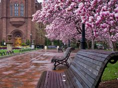 Okay this is one of the few places that I can brag about having seen. This is the Smithsonian Gardens in Washington DC. Dc Travel, Places To Travel, Virtual Travel, Oh The Places You'll Go, Places To Visit, Beautiful World, Beautiful Places, Washington Dc, Spring