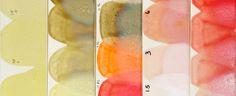 Color Palette - Heath Ceramics