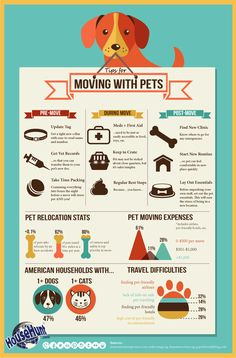 Tips for Moving with Pets [Infographic] will help you and your pet stay stress free during your big move! Moving Home, Moving Day, Moving Tips, Moving Hacks, Moving Expenses, Moving Checklist, Real Estate Information, Real Estate Tips, Pet Relocation