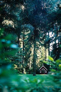 Forest Chapel, Oregon photo via raindrizzle