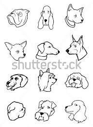 Resultado de imagen para Caras de perros