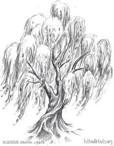 Willow Tree  Tattoo Artistsorg
