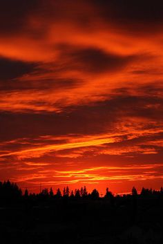 Amazing!   I saw a sunset like this In New Brunswick, Canada.  It was like fire in the sky.  Absolutely AMAZING.