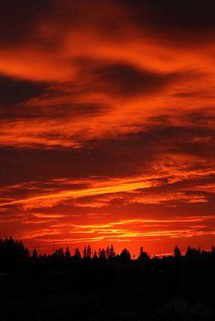 Sunset In Idaho, US