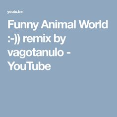 Funny Animal World :-)) remix by vagotanulo - YouTube