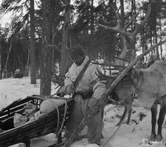 Finnish Wartime Photograph Archive -soldier in snowsuit, wearing an Suopunki over it.