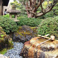 #japan #kyoto #jonangu #shrine #landscape #garden Small Japanese Garden, Japanese Landscape, Japanese Garden Design, Chinese Garden, Japanese Gardens, Garden Inspiration, Garden Ideas, Japan Garden, Garden Lanterns