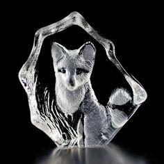 Wildlife Fox cub / Rävunge - Mats Jonasson Målerås Sweden