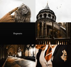 Wizarding Schools Girls and Boys Aesthetics | Hogwarts Girls 1/2