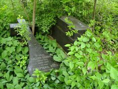 Abandoned cemetery 8 by renegadeofpeace on DeviantArt Pet Cemetery, Cemetery Headstones, Old Cemeteries, Graveyards, Frankenstein, Abandoned Cities, Famous Graves, Old Churches, Beautiful Images