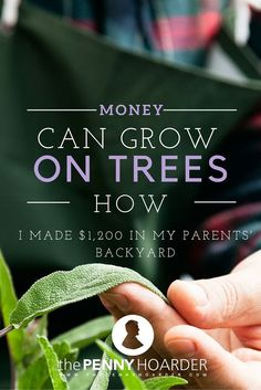 Figuring out how to make money sometimes means relying on your most random skills. For one woman, that meant knowing how to start a garden. Here's how she turned her knowledge into a garden business that earned her $1,200. - The Penny Hoarder http://www.thepennyhoarder.com/garden-business-1200/ make extra money at home, make extra money in college make extra money, ideas to make extra money
