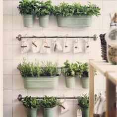 Inspiraçao !!! Olha que graca para colocar os nossos temperinhos na cozinha ? É super facil, voce vai precisar somente de varão de cortina, vasinhos e ganchos!!! De uma cara diferente na sua cozinha! #dassihome