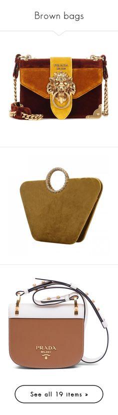 """Brown bags"" by ladyarchitect ❤ liked on Polyvore featuring bags, handbags, shoulder bags, purses, bolsas, borse, prada, multicoloured, man shoulder bag and man bag"