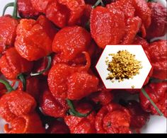 World's Hottest Chili Peppers The Carolina Reaper by treasures1st