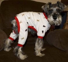 While this is not MY dog.  This is the exact look she gave me when trying to put these pajamas on her!