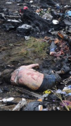 1000+ images about Airplane crash on Pinterest | Planes ... Kim Cattrall Dead