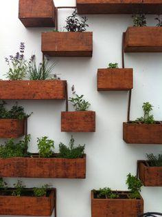 cajas de madera para las plantas