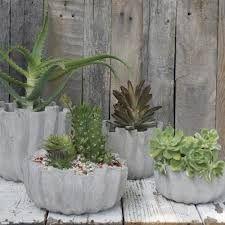 Basteln Mit Beton Google Suche Pflanztrog Diy Zement