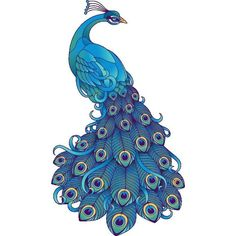 (96) ~ CLIP ART GALORE ~ Peacock | ~ CLIP ART GALORE ~ | Pinterest ❤ liked on Polyvore featuring animals