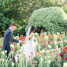 """Kristi Florida Wedding Florist on Instagram: """"OH SNAP // Hand holding through a field of snapdragons on your wedding day. ✔ ✔ . Whether you're like our ALF Bride, Lily, walking through…"""""""
