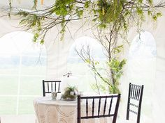 Wisteria Flowers and Gifts | Rustic Dream wedding tent with private table