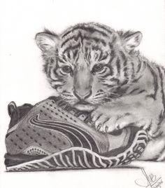 Un Tigre (cachorro) y un Puma...bueno, el zapato jajajajajaja