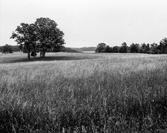 Field at Bull Run. Ilford FP4 Plus 125, Leica M3, Leica Summicron DR 50mm f/2. © Jim Fisher