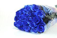 Rose blu in un mazzo di fiori: non trasformati - ROSENBOTE.de