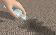 Get Dog Urine Smell out of Carpets - wikiHow when dog sitting a naughty dog