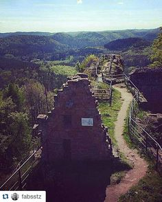 #Repost @fabsstz with @repostapp  #randonnée #balade #hike #hiking #hikingadventures #hiker #tourisme #moselle #france #chateau #ruine #castle #cielbleu #soleil #sun #sky #skyporn #landscape #nature #instanature #naturelovers #vallée #valley #redrocks #grèsdesvosges #paysdebitche #foret #woodmand #arbres by tourismepaysdebitche