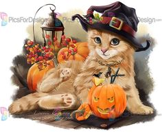 Halloween Cat Diamond Painting Full Square Drill Diamond Embroidery Animals picture Decoration Home Chat Halloween, Halloween Pictures, Fall Halloween, Art Mignon, Photo Chat, Cute Animal Drawings, Cross Paintings, Cat Drawing, Crazy Cats