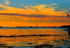 Sunset at sea Photo by Ramune Ram — National Geographic Your Shot
