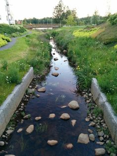 "See our website for more details on ""rainwater collection system"". It is actually an excellent area to read more. Landscape Architecture, Landscape Design, Parque Linear, Lawn Sprinklers, Water Management, Rain Garden, Rainwater Harvesting, Water Conservation, Types Of Plants"