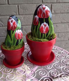 Rock tulips.................no watering is needed..............cas