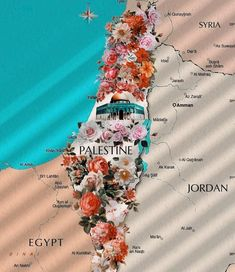 Palestine Map, Naher Osten, Love In Islam, Just Dream, Us Map, Diy Décoration, Photo Quotes, Jordan, Islamic Art