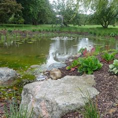 This weeks blog is all about enhancing existing views from your garden. You may not have a large estate to work with like Lancelot…