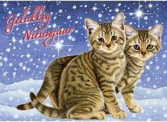 Katten in de sneeuw- Greetz