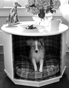 Dog bed and end table! Solves two needs in one!