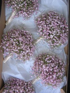 Trying to figure out something simple, but special for your bridemaids? Fluffy clouds of pink Gypsophila.
