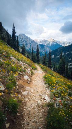 Best Beginner Hikes in Washington State