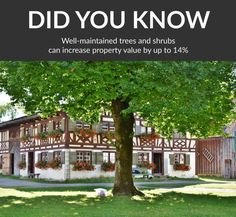 Well-maintained trees and shrubs can increase property value by up to 14% Tree Loppers, Stump Removal, Tree Felling, Property Values, Trees And Shrubs, Pergola, Things To Come, Yard, Facts