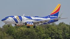 Boeing Planes, Airplane Decor, Southwest Airlines, Civil Aviation, Concorde, Paint Schemes, The Dreamers, Aircraft, Airplanes