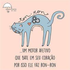 AMO RON RON!!! <3 #petmeupet #gato #amogato #maedegato #paidegato